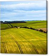 View On Fields Canvas Print