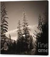 Vignette In Sepia  Canvas Print