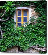 Vine Covered Stone House Canvas Print