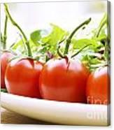 Vine Tomatoes On A Salad Plate Canvas Print