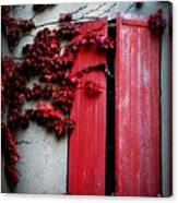 Vines On Red Shutters Canvas Print
