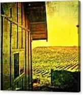 Vineyard Reflection Canvas Print