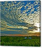 Vineyard Sunset I Canvas Print