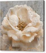 Vintage Rose I Square Canvas Print