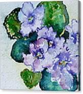 Violet Cluster Canvas Print