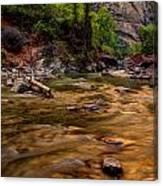 Virgin River Zion Canvas Print