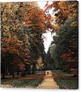 Virginia Water Canvas Print