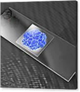 Virus On Microscope Slide Canvas Print