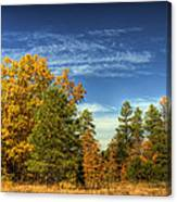 Visions Of Fall  Canvas Print