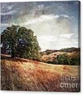 Vista Of Distant Memory Canvas Print