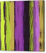 Visual Cadence V Canvas Print