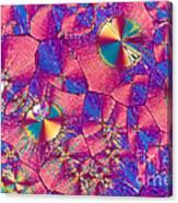 Vitamin B3 Crystal Canvas Print