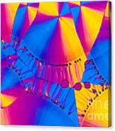 Vitamin B6 Crystal Canvas Print