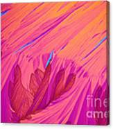 Vitamin E Crystal Canvas Print