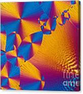 Vitamin H Crystal Canvas Print