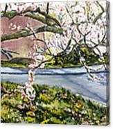 Vnucka-pirner Canvas Print