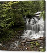 Wagner Falls Forest Canvas Print