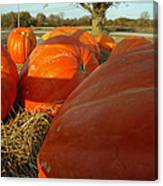 Wagon Ride For Pumpkins Canvas Print