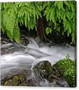 Wahkeena Falls One Canvas Print