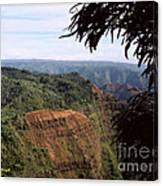 Waimea Canyon And Marshes Canvas Print