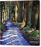 Walk On A Cold Autumn Day Canvas Print