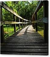 Walk This Way To Nature Canvas Print