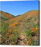 Walking Thru The Wildflowers Canvas Print