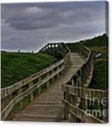 Walkway On Phillip Island Canvas Print