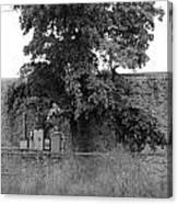 Wall Tree Canvas Print