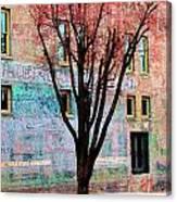 Wall Wth Secrets Canvas Print