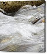 Water 2 Canvas Print