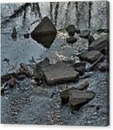 Water And Woods Canvas Print