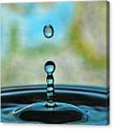Water Drop 2 Canvas Print