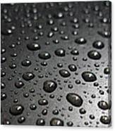Water Drops On Black Metalica. Business Card. Invitation. Sympathy Note. Canvas Print