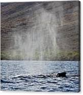 Water From A Whale Blowhole II Canvas Print