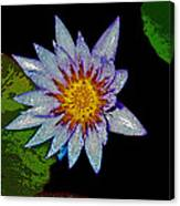 Water Lilly Paint Canvas Print