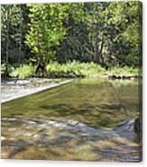 Water Over The Bridge Canvas Print