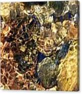 Water Palate Canvas Print