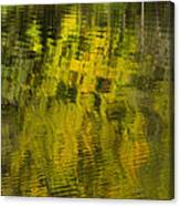 Water Reflection Abstract Autumn 1 E Canvas Print