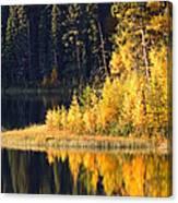 Water Reflection At Jade Lake In Northern Saskatchewan Canvas Print