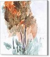 Watercolor Sketch Canvas Print