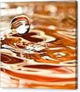 Waterdrop8 Canvas Print