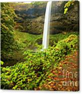 Waterfall Along The Trail Canvas Print