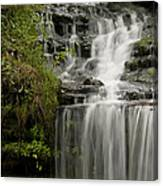 Waterfall Flows Canvas Print