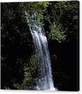 Waterfall In A Forest, Glencar Canvas Print