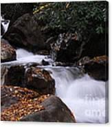 Waterfall In Fall Canvas Print