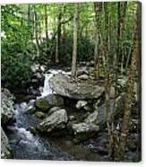 Waterfall In Stream Canvas Print
