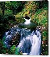 Waterfall In The Woods, Ireland Canvas Print