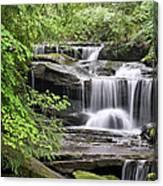 Waterfall Near Mabbitt Spring Canvas Print