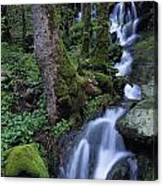 Waterfall Pouring Down Mountainside Canvas Print